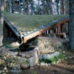 Дача архитектора. Дерновая кровля дома в лесу