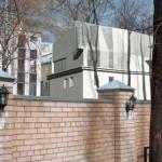 «Игуана» в городе: необычное существо поселилось в одном из московских дворов