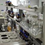 В МГУ появился уникальный исследовательский центр