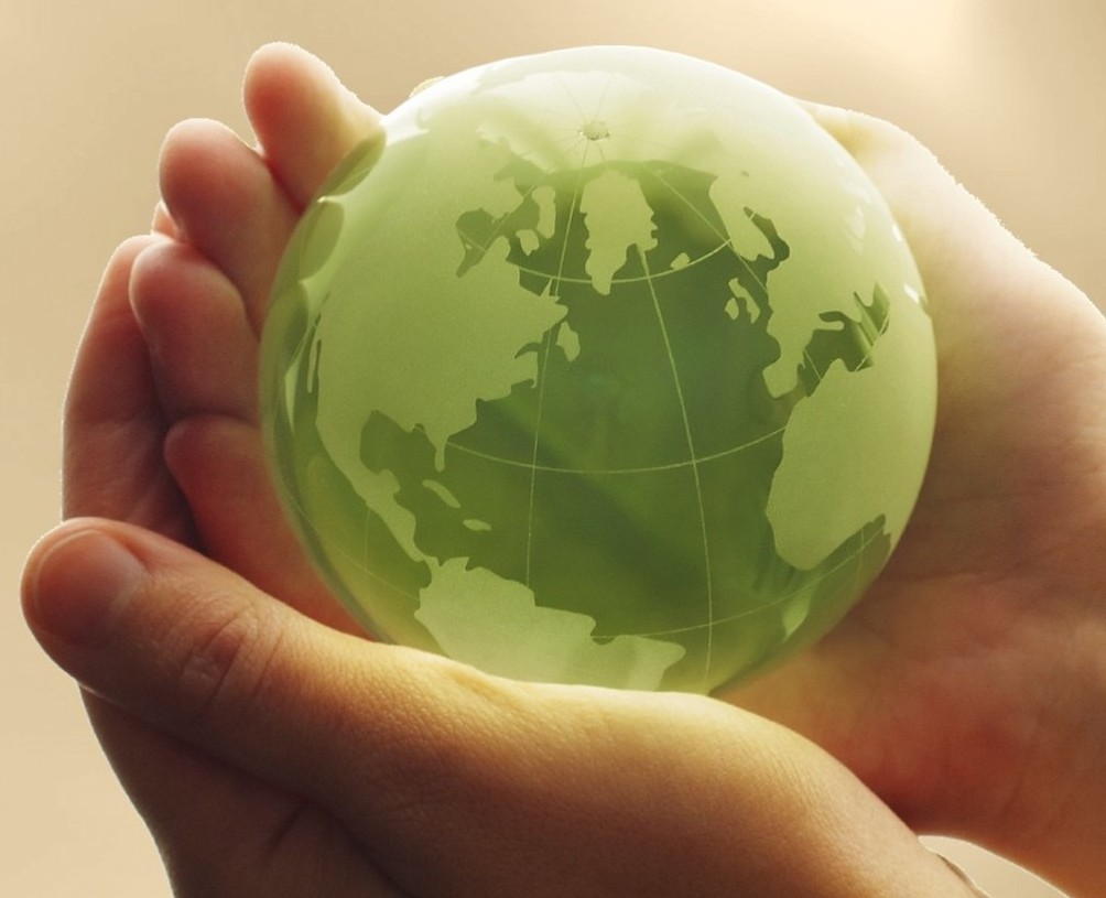 Что такое экологическая безопасность?