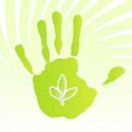 РОСИЗОЛ приглашает на презентацию каталога экологически безопасных материалов GREEN BOOK!