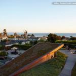 Озелененные крыши: 4 пути управления дождевой водой