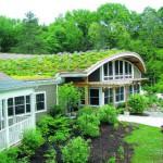 Эксперты рассказывают: о системах экологического нормирования