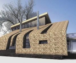 Кровельные фантазии на тему экологической архитектуры