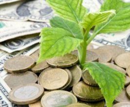 ТехноНИКОЛЬ запустила программу «экологического кэшбека»