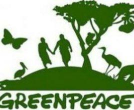 Корпорация «ТЕХНОНИКОЛЬ» поддержала инициативу GreenPeace России по сбору и вторичной переработке полистирольных отходов