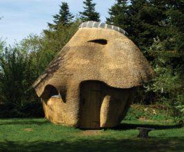 Неожиданно: сауна с камышовой крышей!